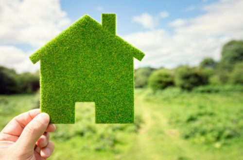 Benefits of Using Sustainable Building Materials for Home Construction