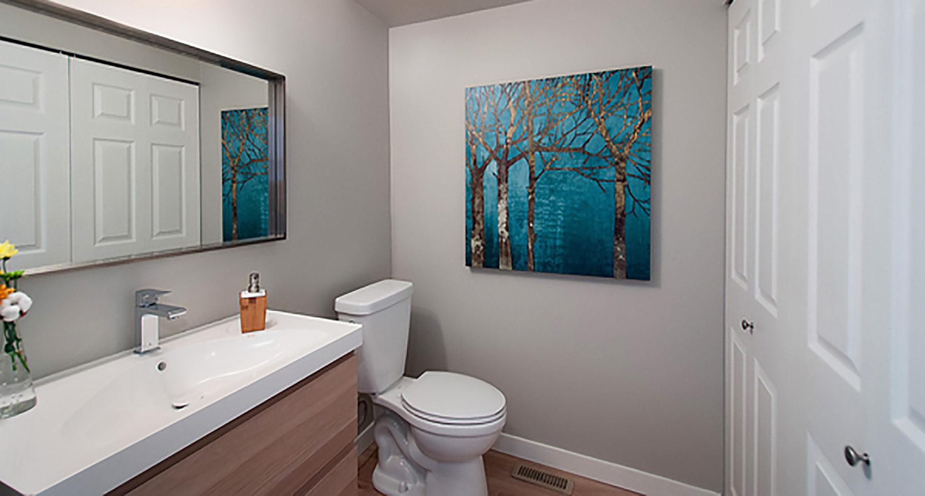 Bathroom Renovation Delta Deltatownhouse Slider