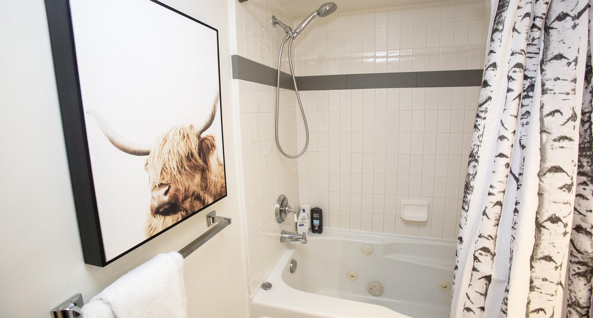 Squamish Custom Bathroom Renovations & Design | Alair Homes