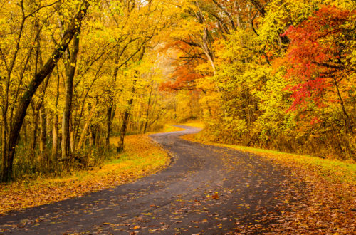 Savoring Fall's First Celebrations Near Solon