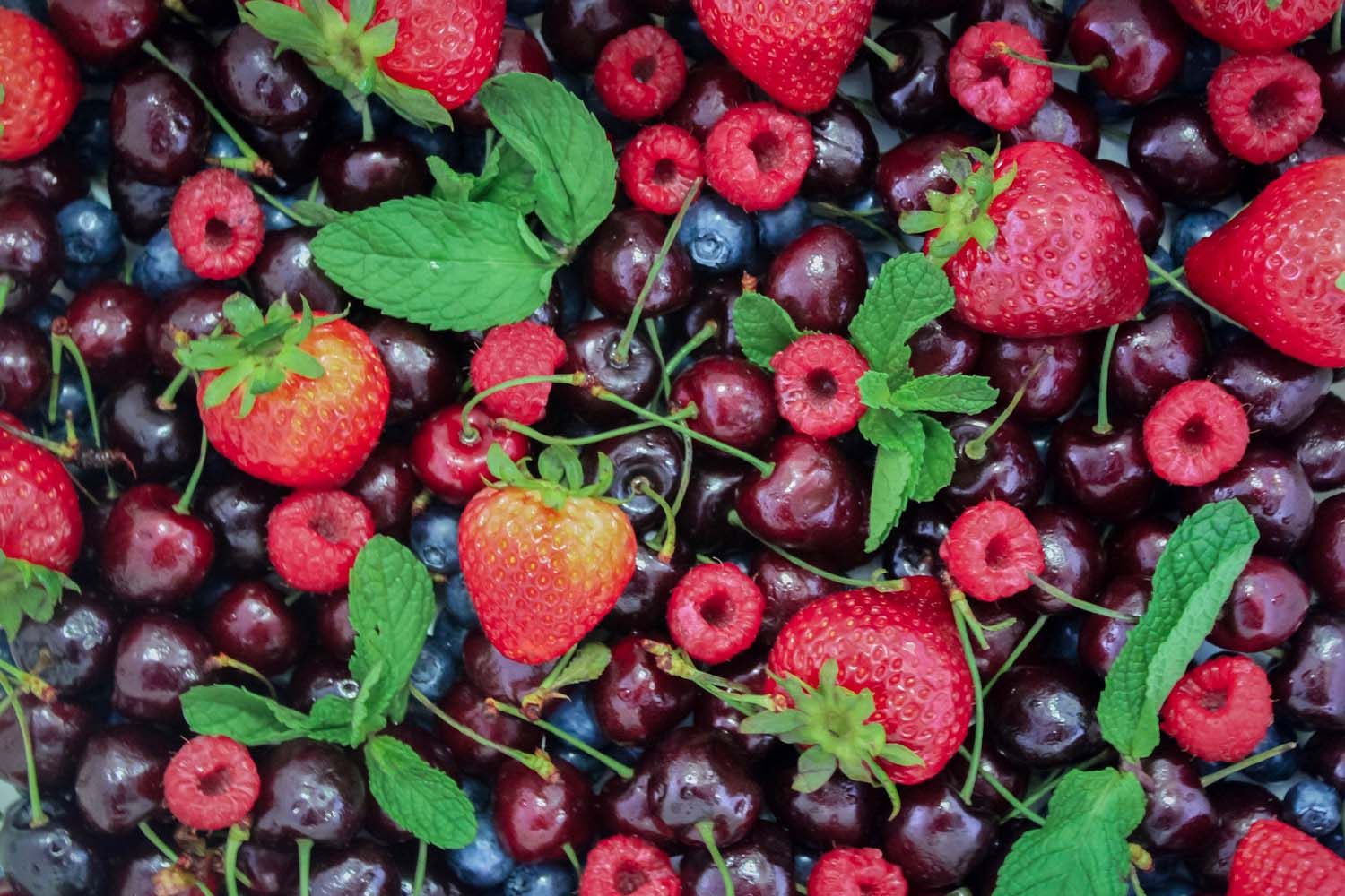 berries-garden-to-table-an-extension-of-your-kitchen-alair-cuyahoga-falls